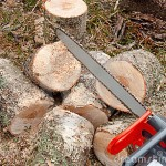 chain-saw-for-wood-cutting